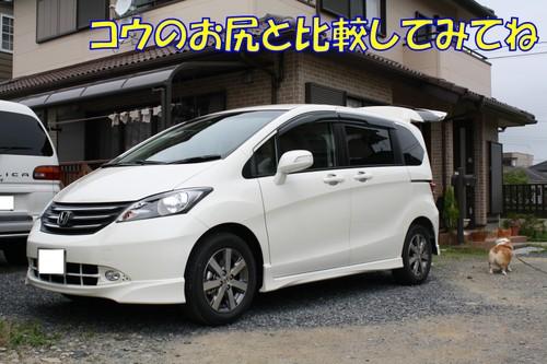 009_new_12