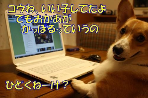 050_new
