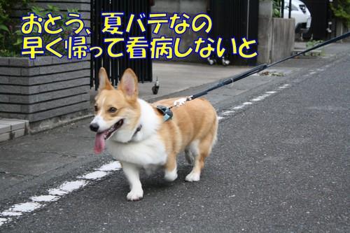 042_new