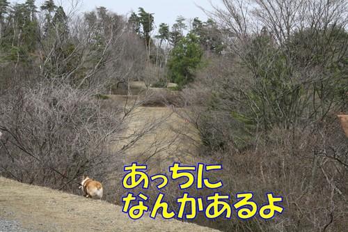 098_new_2