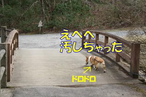 145_new