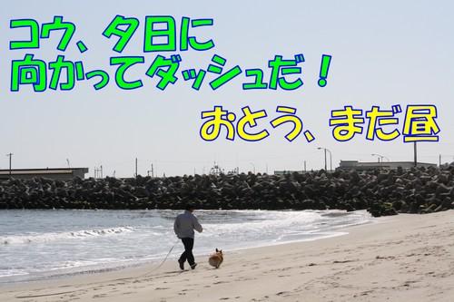 258_new