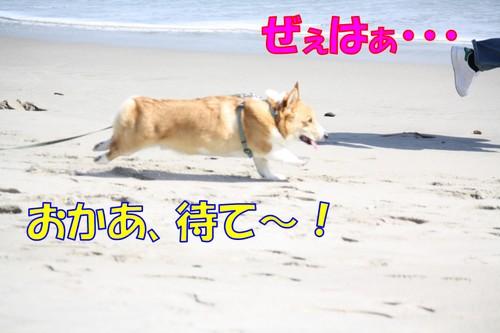 328_new