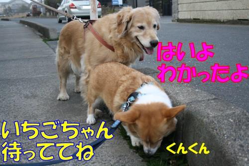 059_new