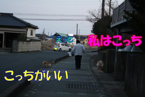 177_new