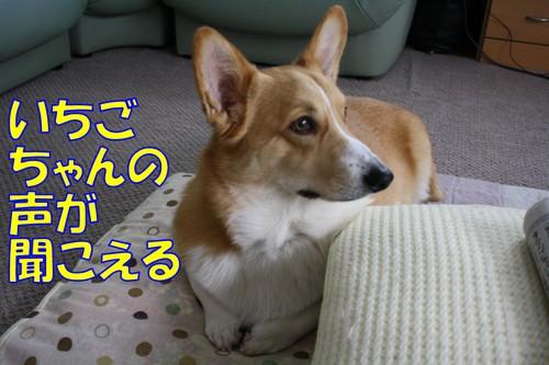 004_new_2