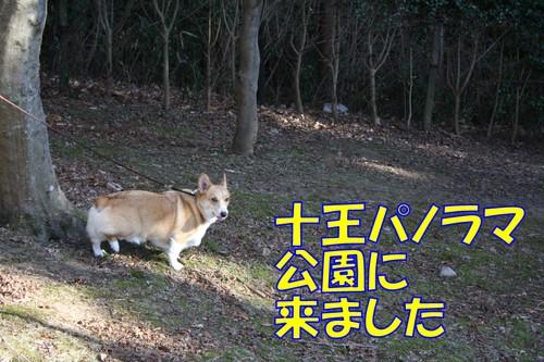 137_new