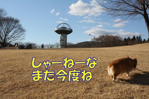 167_new