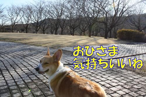 185_new