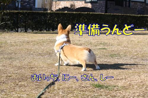 065_new