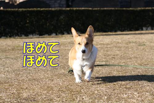 054_new