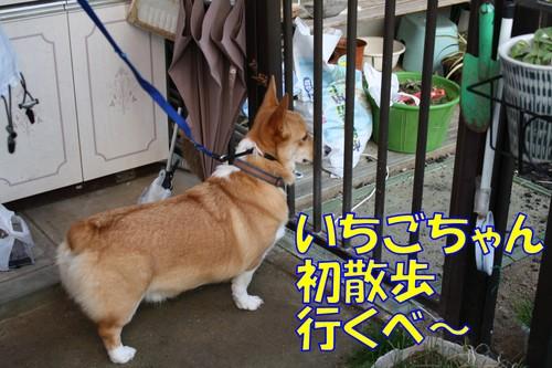 147_new