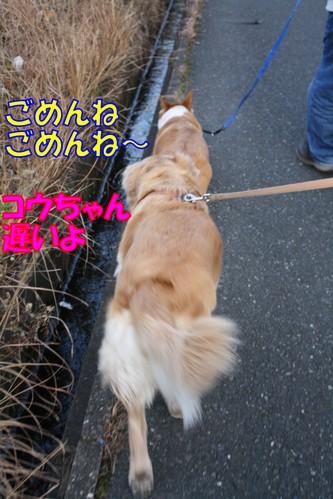 204_new