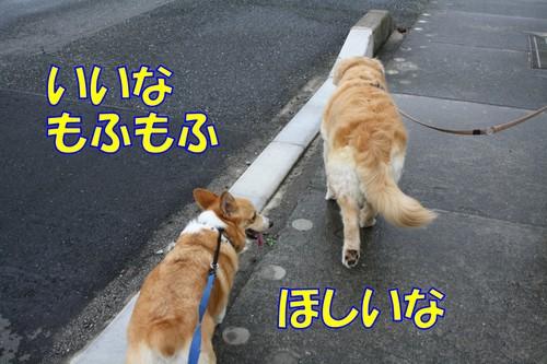 095_new