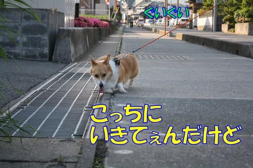 015_new