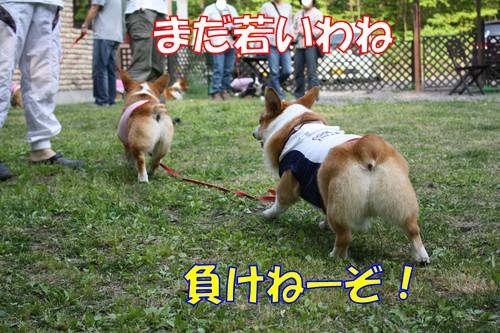 099_new_2