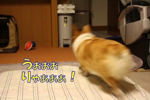 173_new