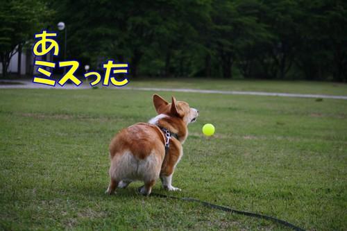 325_new