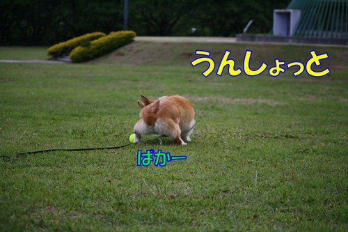 329_new