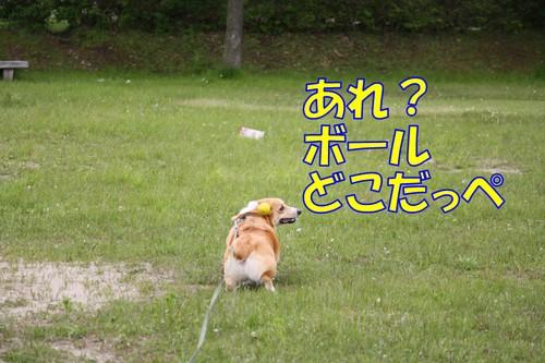044_new