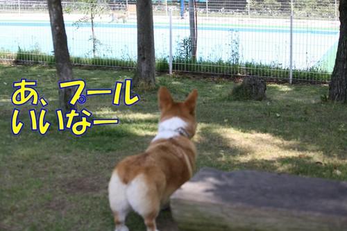 142_new