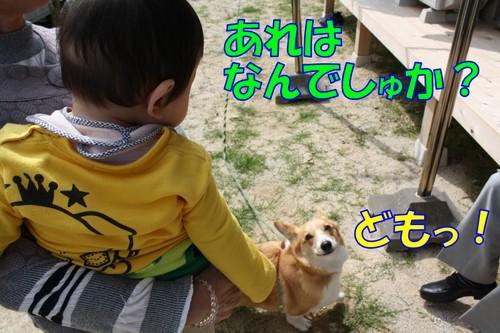 20100579_new