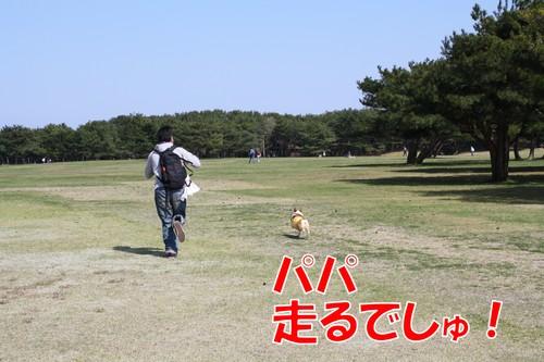 660_new