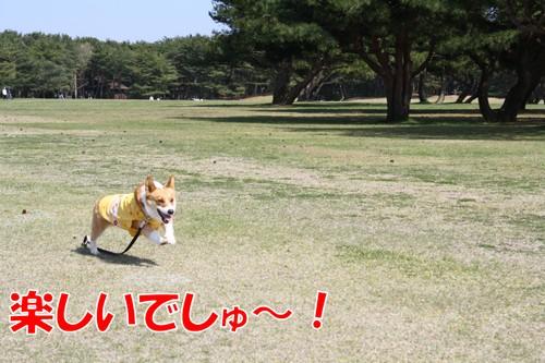 699_new