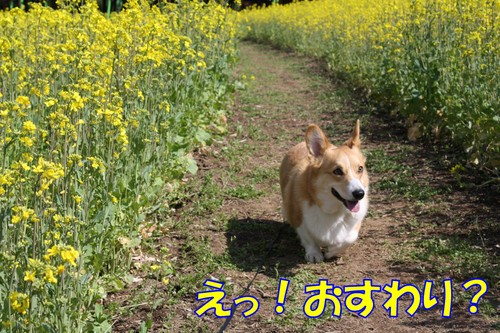 713_new