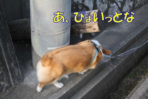 068_new