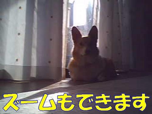 091_new