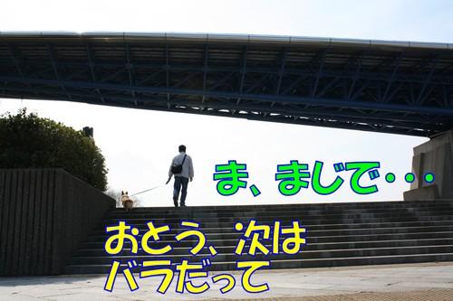 330_new