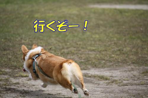 123_new_2
