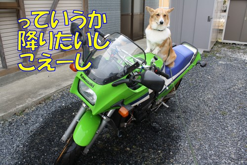 059_new_2