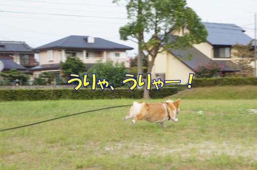 124_new