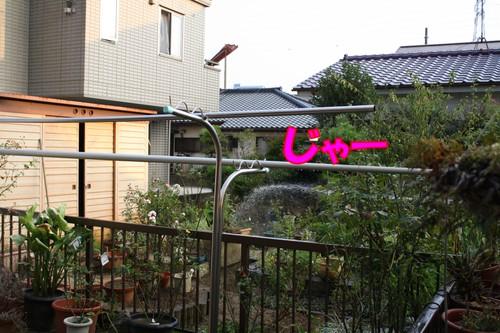 055_new