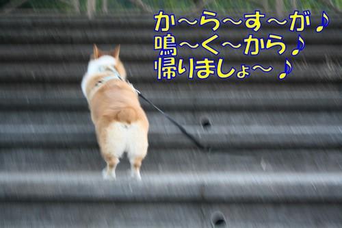 079_new