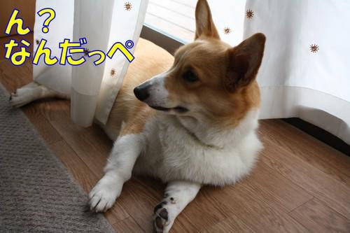 028_new_2