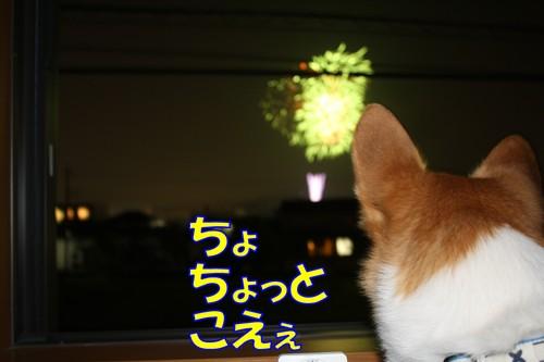 052_new