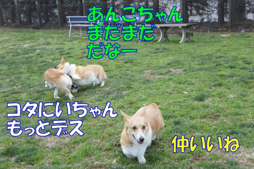 579_new