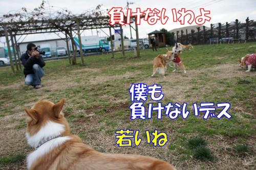 518_new