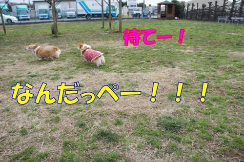 419_new