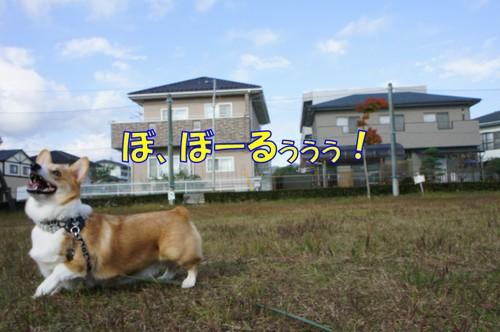 136_new
