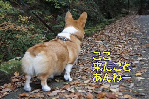 004_new