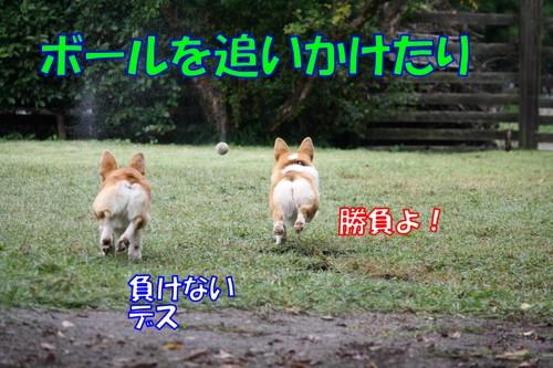008_new