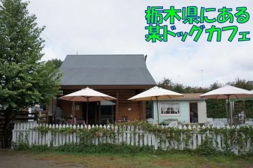 023_new