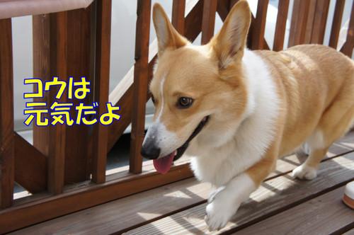 092_new