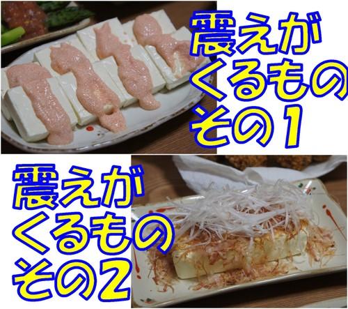20110212_4_new