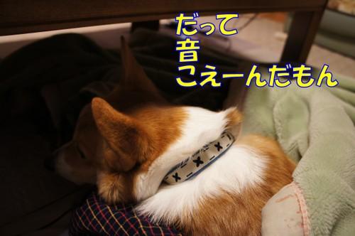 047_new