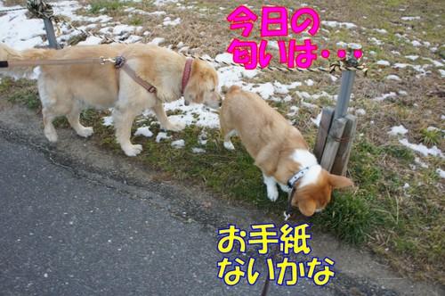 016_new